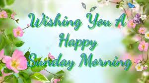 Happy Sunday Morning Beautiful Wisheswhatsapp Videogreetingscards