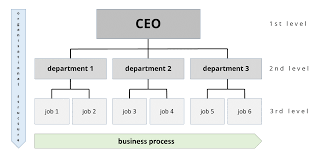 Organizational Domain Chart Organizational Structures An Explanation Ionos