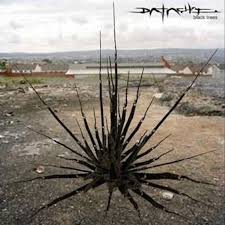 <b>Black Trees</b> | Datach'i