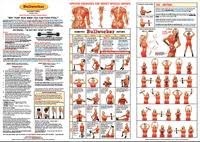 Bullworker Chart Free Workout Exercises Bullworker X5