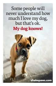 Quotes About Dogs Love Best Download I Love My Dog Quotes Ryancowan Quotes
