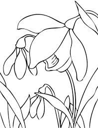 Small Picture Cute Little Chick And Flower Spring Animal Coloring Pages Animal