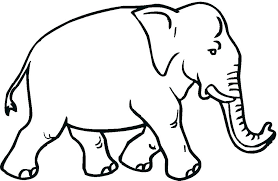 Elephant For Coloring Elephant Color Pages Print Elephant Coloring