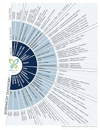 Biomimicry Taxonomy Asknature
