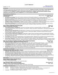 Resume Templates Information Technology Manager New It Manager