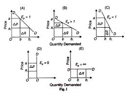 essay on the price elasticity of demand quantity demanded and price
