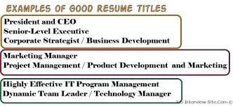 good headline for resume best resume title for freshers best resume headline  for hr freshers