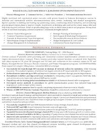 Resume Sample - Senior Sales Executive Page 1