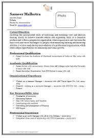 Professional Chartered Accountant Resume Sample Doc 1 Format