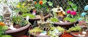 diy fairy garden palmers garden centre