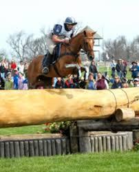 """Teddy"" the Eventing Pony Wins 2007 Farnam? / Platform ..."