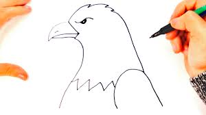 Small Picture How to draw a Eagle for kids Eagle Drawing Lesson Step by Step