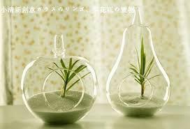 home decor glass vase decoration home decoration transparent glass