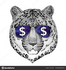 фото пантера дикая кошка пантера дикая кошка дикая кошка Leopard