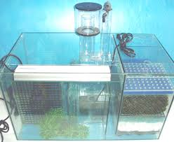 Freshwater Aquarium Sump Plumbing Design Filters And Pumps Page Ecological Filtration System