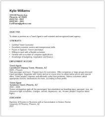 Sample Travel Management Resume Travel Agent Sample Resume Magdalene Project Org