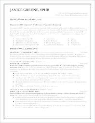 Good Looking Cv Good Look Professional Resume Word Format Word Professional