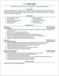 Example Of Professional Management Resume Resume Resume
