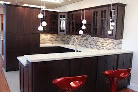 massive plant pot under black framed kitchen design pictures dark cabinets top white cermiac floor tiled