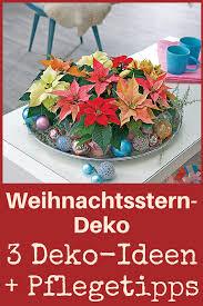 Deko Mit Weihnachtssternen Bastelideen Diy