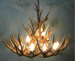 deer antler chandelier ideas nz