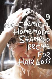 9 homemade shampoo for hair loss holistic remedy in financial budget