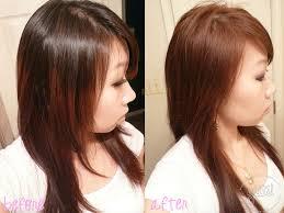 Auburn Brown Hair Color Highlights Honey Sophie Hairstyles