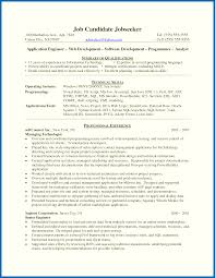 Java Developer Resume Example Objective For Resume Java Developer Enchanting Programmer Resume 20