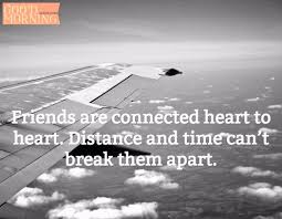 Quotes About Friendships And Distance 100 Best Friends Quotes with Funny Images 76