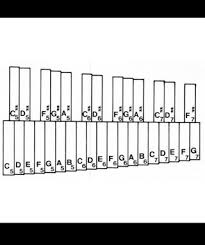 Learning To Play The Xylophone 5 Steps With Pictures