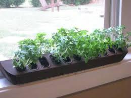 indoor herb pots up cycled poultry feeder herb planter source divine  designs inc indoor herb garden