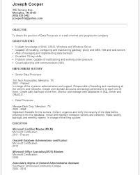 Great Examples Of Resumes Best Processor Resume R Loan Processor Resume Loan Processor Objective