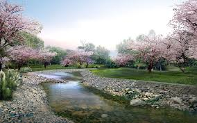 Looking for the best background spring hd? Spring Wallpapers 1920x1200 Desktop Backgrounds