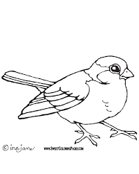 Small Picture Beautiful Pictures Of Birds To Color Images New Printable