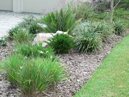 Small Picture Low Maintenance Landscaping Florida Design and Ideas Beautiful