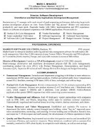 Creative Software Development Project Manager Resume For Sample