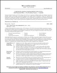 Cfo Resume Template Cool Sample CFO Resume Page 48 Resume Examples Pinterest Resume