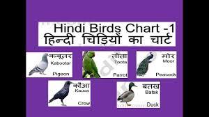 Hindi Birds Name Chart Hd New Birds Name Hindi With English Video Kg And Nursery Child