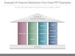 Channel Of Distribution Chart Example Of Channel Distribution Flow Chart Ppt Examples