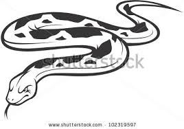 Small Picture Wild Burmese Python Illustration Stock Vector 102319597 Shutterstock