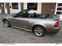 2002 Ford Mustang GT Convertible in Mineral Grey Metallic photo #6 ...