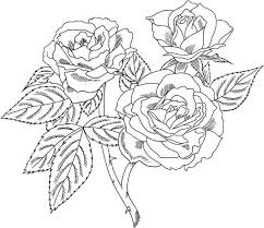 Print now roses, tulips, buttercup, dahlias, sunflowers, and many other marvelous species. Hard Rose Coloring Pages Flower Coloring Pages Rose Coloring Pages Coloring Pages For Grown Ups