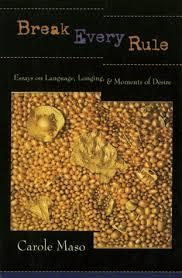 break every rule essays on language longing and moments of  break every rule essays on language longing and moments of desire by carole maso