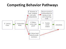 Competing Pathways Chart Ppt Functions Based Behavior Intervention Planning From