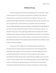 essay of politics co political essay