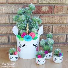 unicorn cactus flower planter pots