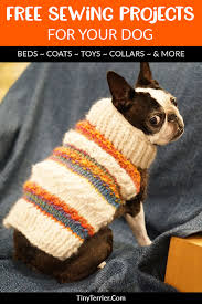 if you re looking for some inspiration for your next diy dog sewing project then