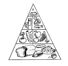 Food Pyramid Coloring Sheet Baffling Food Group Coloring Pages Od