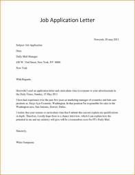 Resume Responsibilities Writing Application For Job Pdf Resume