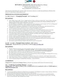 Resume Writers Houston Tx Professional Resume Templates